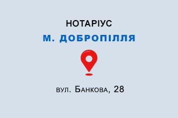Молодняк Ольга Володимирівна Донецька обл., м. Добропілля, 85004, вул. Банкова, 28