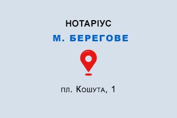 Овдійчук Олена Юріївна Закарпатська обл., м. Берегове, 90202, пл. Кошута, 1