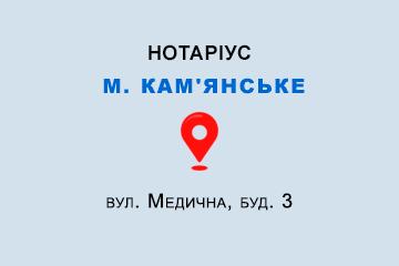 Трощій Наіля Галібовна Дніпропетровська обл., м. Кам'янське, 51931, вул. Медична, буд. 3