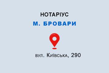 Іваненко Олег Валерійович Київська обл., м. Бровари, 07400, вул. Київська, 290