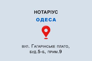 Лемешко Олена Михайлівна Одеська обл., м. Одеса, 65009, вул. Гагарінське плато, буд.5-б, прим.9